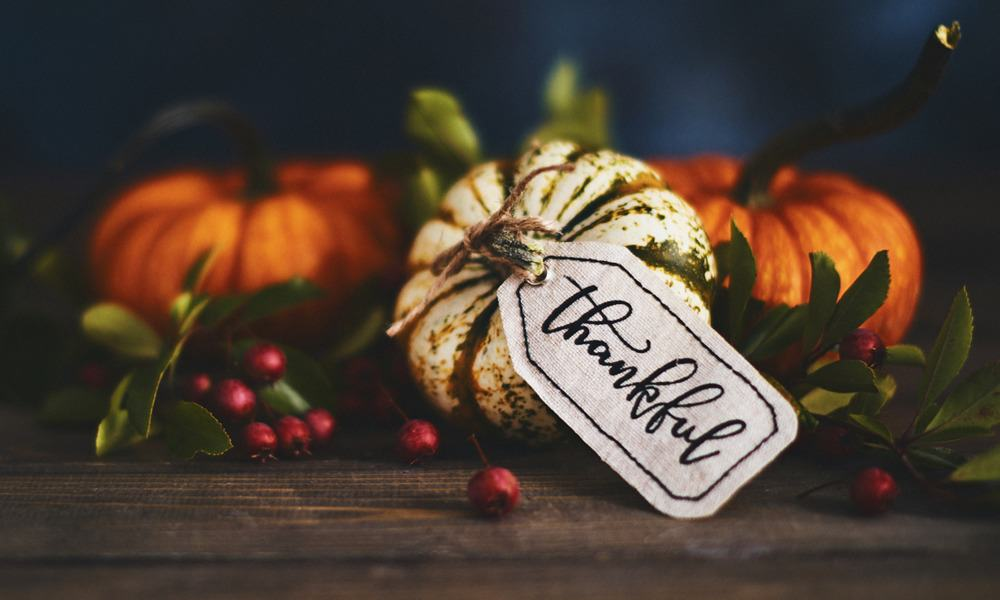 cultivating Gratitude This season